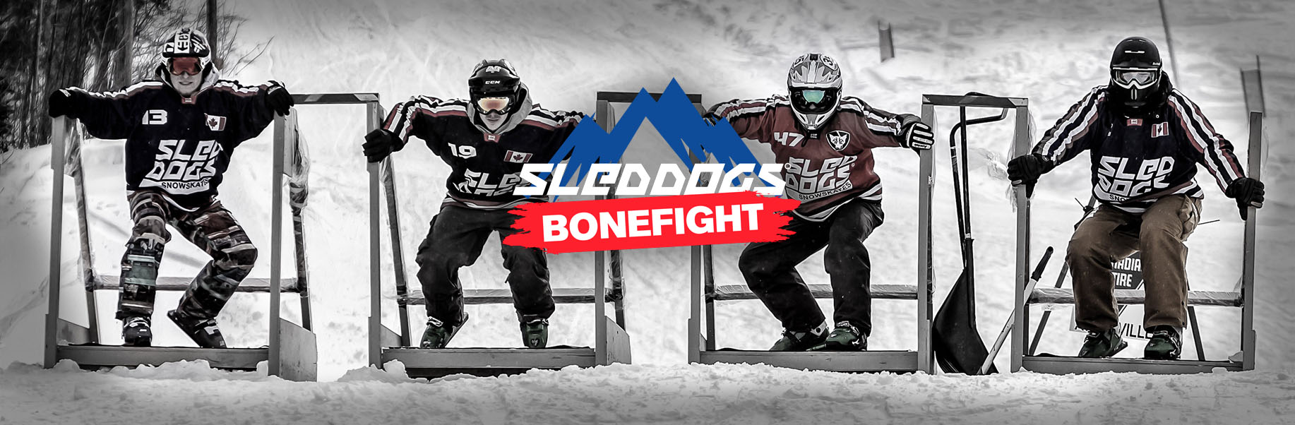 Sled Dogs Bonefight Czech republic